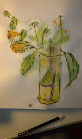 Wildflowers, Byrdcliffe, watercolor and pen on rice paper, by William Eaton, Sep 2018 - 2